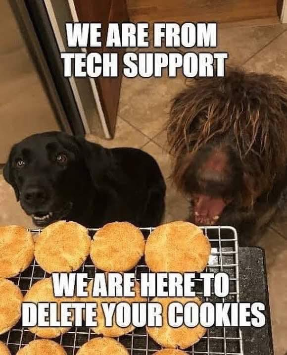 Cat/Dog tech meme