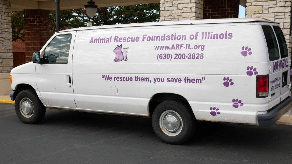 The A.R.F. animal rescue van (the ARFmobile)