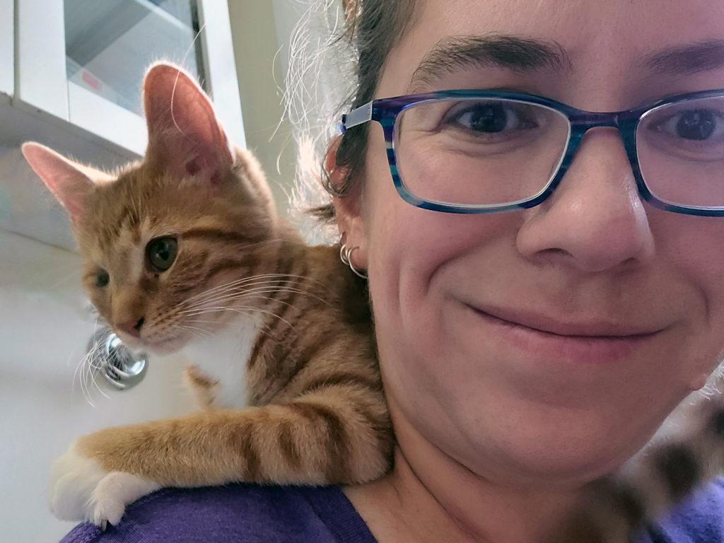 Nesby kitten living her best life