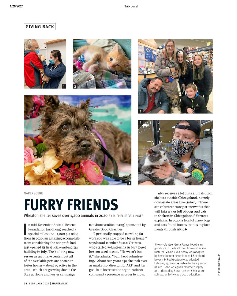 Furry Friends - A.R.F. in Naperville Magazine, February 2021