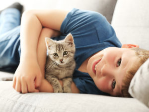 Brining home a new kitten for adoption