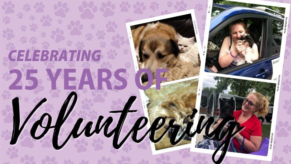 Celebrating 25 Years of Volunteering